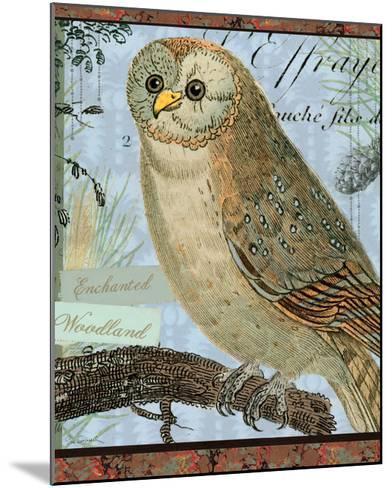 Enchanted Woodland-Sue Schlabach-Mounted Art Print