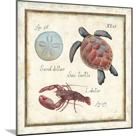Oceanography II-Daphne Brissonnet-Mounted Premium Giclee Print