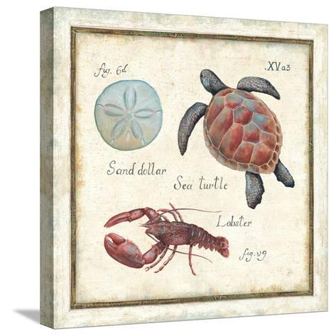 Oceanography II-Daphne Brissonnet-Stretched Canvas Print