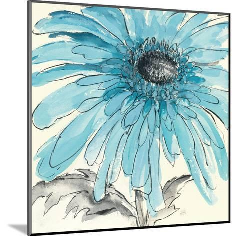 Gerbera Blue III-Chris Paschke-Mounted Art Print