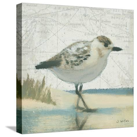 Beach Bird I-James Wiens-Stretched Canvas Print
