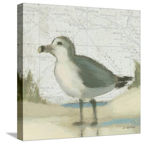 Beach Bird II-James Wiens-Stretched Canvas Print