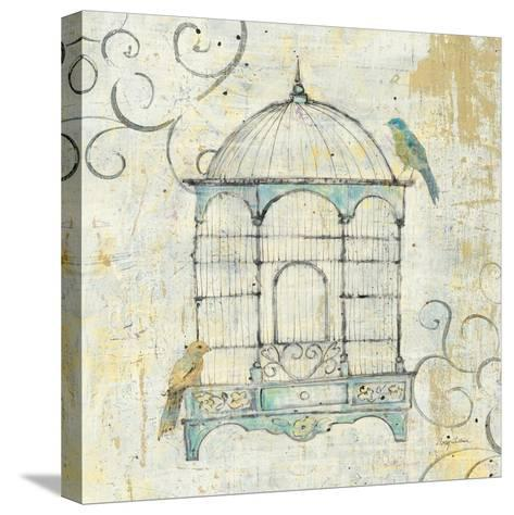 Bird Cage IV-Avery Tillmon-Stretched Canvas Print
