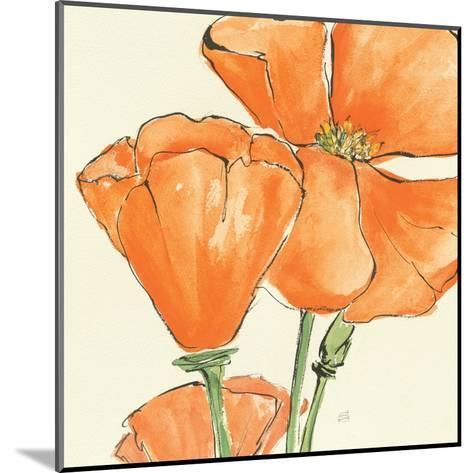 Sunshine Poppy III-Chris Paschke-Mounted Art Print