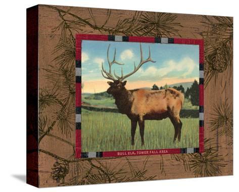 Elk I-Hugo Wild-Stretched Canvas Print