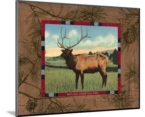 Elk I-Hugo Wild-Mounted Art Print