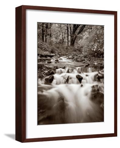Wahkeena Creek Crop-Alan Majchrowicz-Framed Art Print