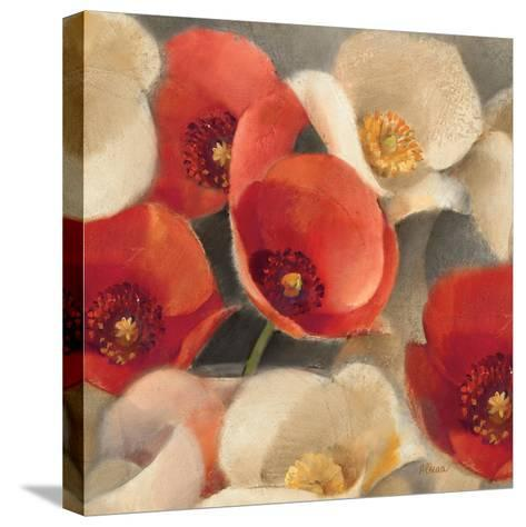 Poppies Bloom II-Albena Hristova-Stretched Canvas Print