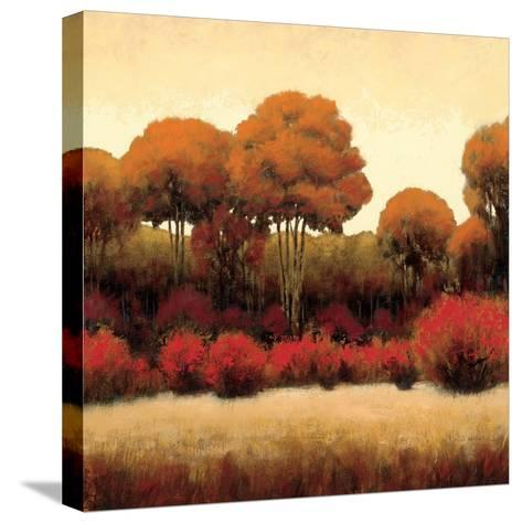 Autumn Forest II-James Wiens-Stretched Canvas Print