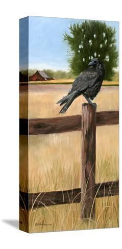 Crow-Julie Peterson-Stretched Canvas Print