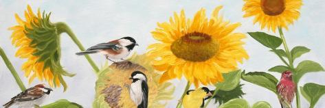 Sunflowers and Birds-Julie Peterson-Stretched Canvas Print