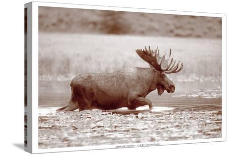 Sepia Moose-Gary Crandall-Stretched Canvas Print