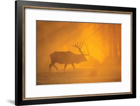 River Crossing-Gary Crandall-Framed Art Print
