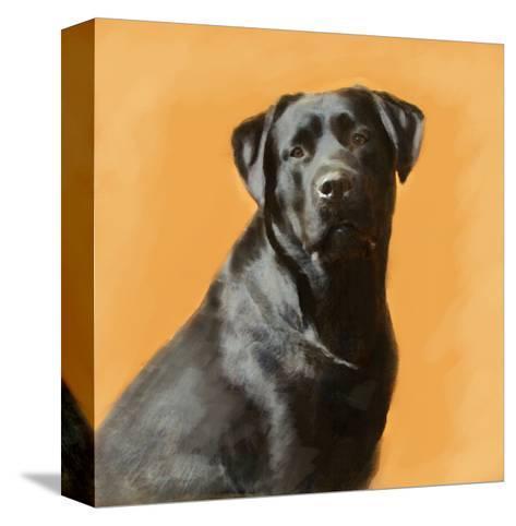 Oil Painting Portrait Of Black Labrador Male-Yarvet-Stretched Canvas Print