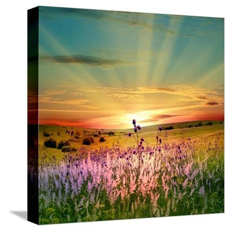 Sunset Is In The Field-nadiya_sergey-Stretched Canvas Print