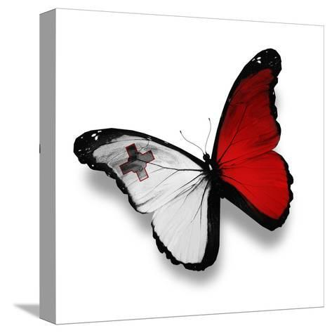 Maltese Flag Butterfly, Isolated On White-suns_luck-Stretched Canvas Print