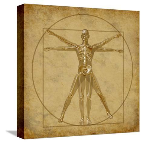 Vitruvian Human Diagram Grunge Medical Chart-digitalista-Stretched Canvas Print