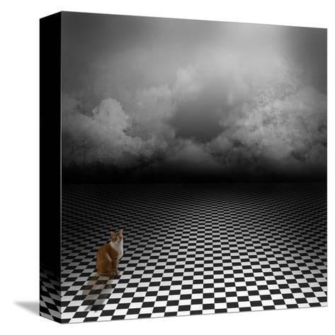 Ginger Cat Sitting In Empty, Dark, Psychedelic Image With Black And White Checker Floor-IngaLinder-Stretched Canvas Print