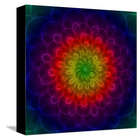 Colorful Peacoke Feather Flower- sgame-Stretched Canvas Print