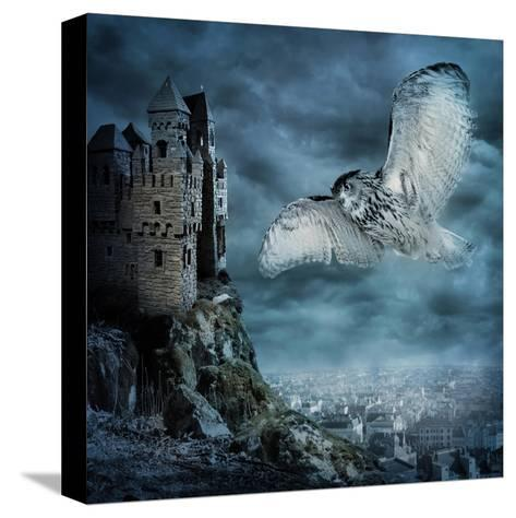 Flying Owl Bird-egal-Stretched Canvas Print