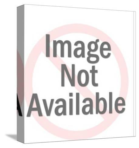 Man Holding Blank Sign-Pop Ink - CSA Images-Stretched Canvas Print