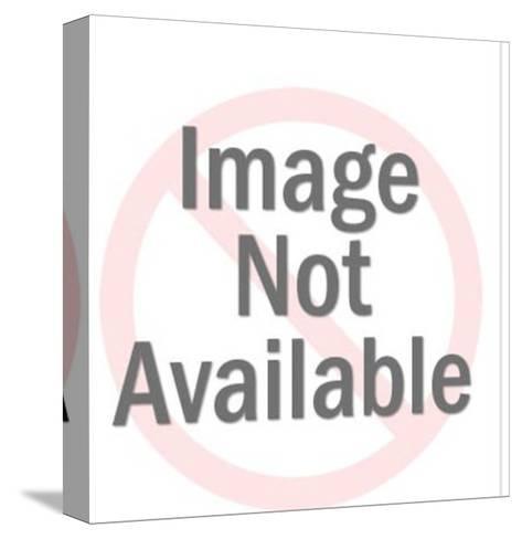 Suspension Bridge-Pop Ink - CSA Images-Stretched Canvas Print
