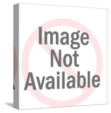 Doberman-Pop Ink - CSA Images-Stretched Canvas Print