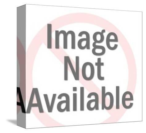 Romantic Cat Couple-Pop Ink - CSA Images-Stretched Canvas Print