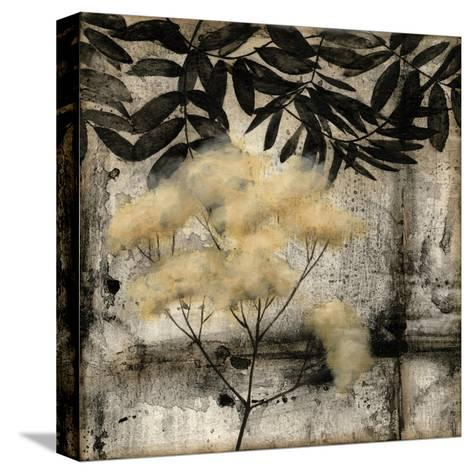 Nature's Breath III-Jennifer Goldberger-Stretched Canvas Print