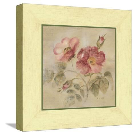 Burgundy Rose-Cheri Blum-Stretched Canvas Print