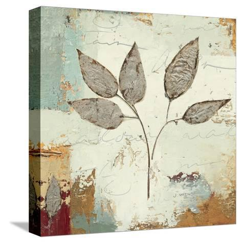 Silver Leaves III-James Wiens-Stretched Canvas Print