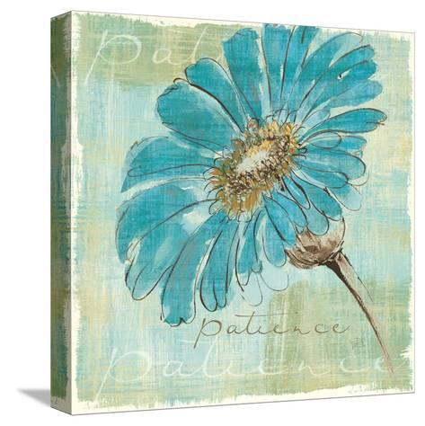 Spa Daisies II-Chris Paschke-Stretched Canvas Print