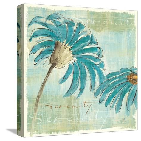 Spa Daisies IV-Chris Paschke-Stretched Canvas Print