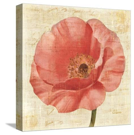 Blushing Poppy on Cream-Albena Hristova-Stretched Canvas Print