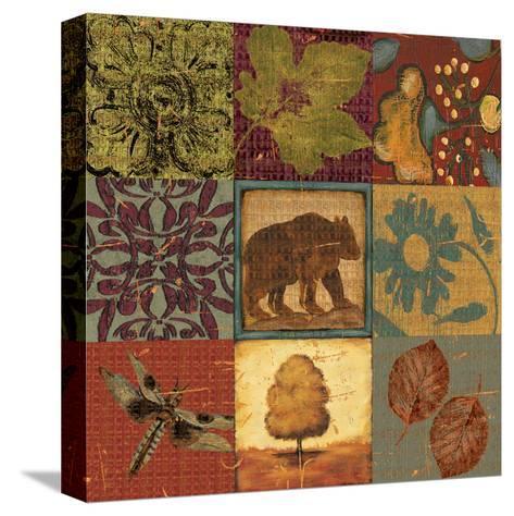 Teton Tapestry I-Jo Moulton-Stretched Canvas Print