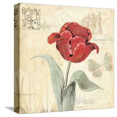 Tulip Gem I-Jo Moulton-Stretched Canvas Print