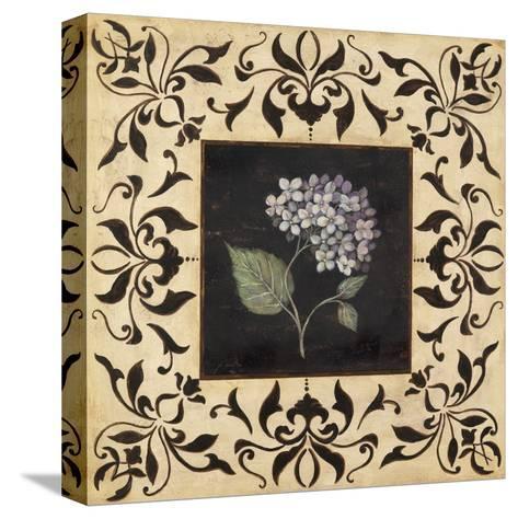 Hydrangea-Jo Moulton-Stretched Canvas Print