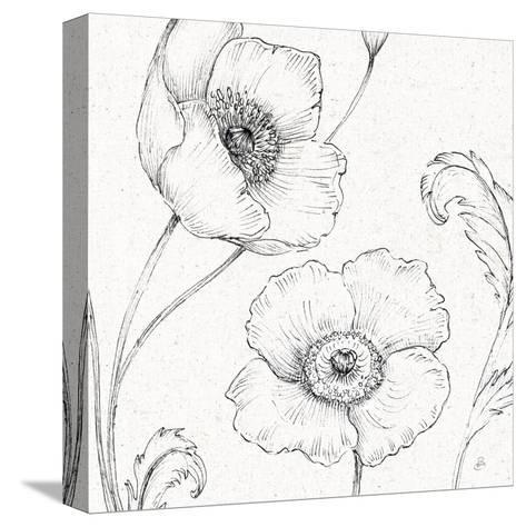 Blossom Sketches I-Daphne Brissonnet-Stretched Canvas Print