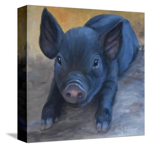 Cole's Baby Pig-Cheri Wollenberg-Stretched Canvas Print