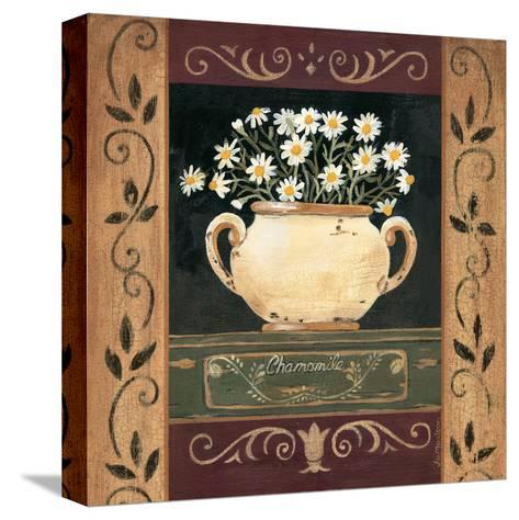 Chamomile-Jo Moulton-Stretched Canvas Print