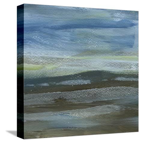 Denim Dance IV-Lisa Choate-Stretched Canvas Print