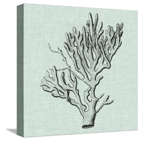 Serene Coral III-Vision Studio-Stretched Canvas Print