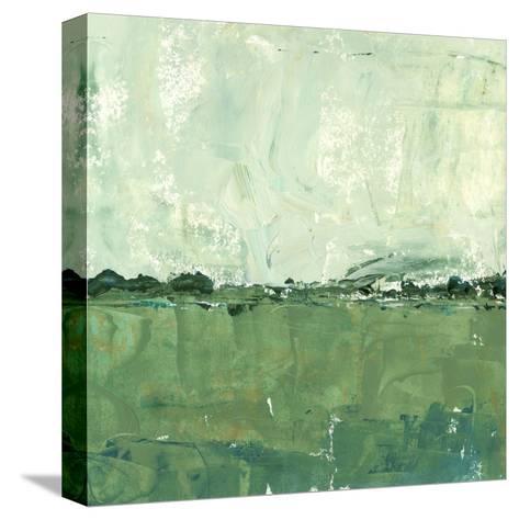 Vista Impression II-Ethan Harper-Stretched Canvas Print