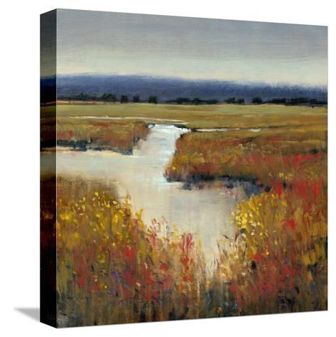 Marsh Land I-Tim O'toole-Stretched Canvas Print