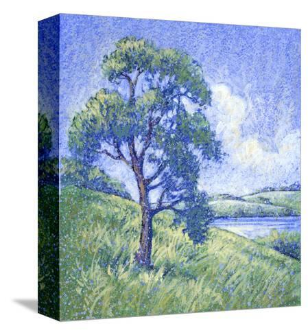 Tree by the Lake--Stretched Canvas Print