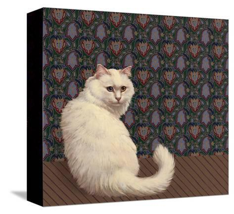 Long Haired White Cat--Stretched Canvas Print