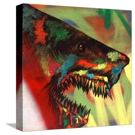 Shark Head Study 1-Shark Toof-Stretched Canvas Print