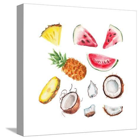 Watercolor Summer Fruits Set-lenavetka87-Stretched Canvas Print