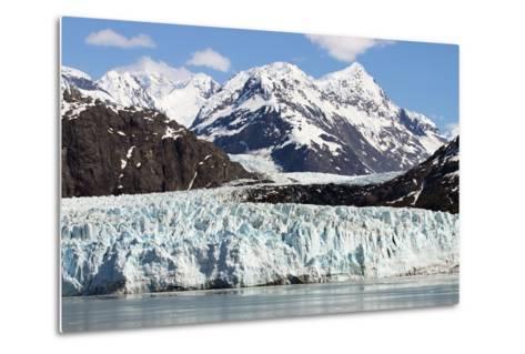 Glacier Bay-ziss-Metal Print