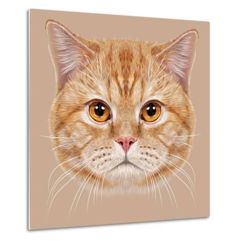 Illustration of Portrait British Short Hair Cat. Cute Orange Domestic Cat with Copper Eyes.-ant_art19-Metal Print